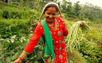 International Day honours rural women's critical role in feeding the world | UN News – SDGs