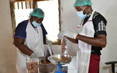 Food Hero: Cameroon's shrimp entrepreneur | UN News – SDGs