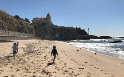 Portuguese beaches lead the way duringUN,EU clean-up campaign | UN News – SDGs